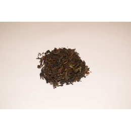 Oolong Taiwan Butterfly Formosa Ortus - 3